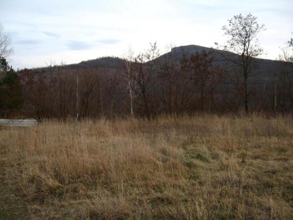 Grundstück zum Verkauf in der Nähe von Veliko Tarnovo
